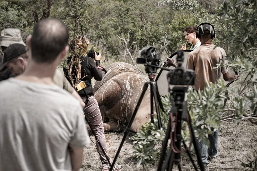 wild-shots-stroop-documenatary-stroop-bts-copyright-jeffrey-barbee